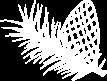 Logo: Appartamento Barantl